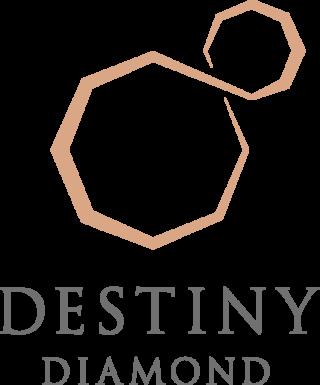 intro_logo